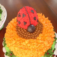 Lady Bug All cakes are butter cream, this was just fun to make for my friends girls.