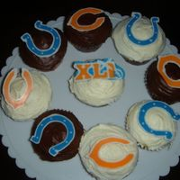 Superbowl Xli Cupcakes These are SuperBowl cupcakes that I made for the game. There are chocolate transfers of the Bears, Colts and SuperBowl logos.