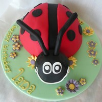 Ladybeetle!  My first ladybeetle covered in fondant. Chocolate mud covered in chocolate ganche. I used drinking straws covered in fondant for the...