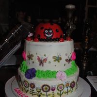 Lady Bug For A Baby Shower Cake This was a two tier b/c cake inside and out. I used the Luck's edible prints for the two tiers covering. The accesories are made with...