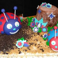 Lady Bug Cake My first real cake after shoulder surgery. I made this to see is my shoulder could take rolling out fandant, so far so good! It was blue...