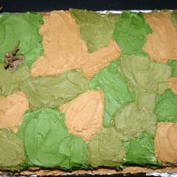 Army/camo Cake My first attempt at a freehand design. I think it turned out pretty well!