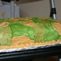 Different View Of Camo Cake