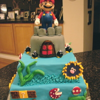 Super Mario Bros  This is a chocolate cake with fudge filling. The entire cake is MMF and the castle is gumpaste. I also used BC frosting for some...