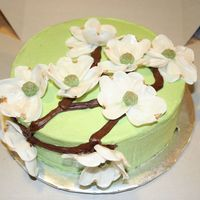 Dogwood Blossom Cake Gumpaste Dogwood blossoms. Chocolate cake with whipped semi-sweet ganache filling and green vanilla BC frosting. Ganache branches