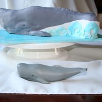Whale Cake My first sculpted cake. This was a birthday cake for a woman who has a passion for whales. Vanilla cake with vanilla buttercream and rolled...