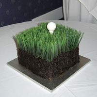 "Golf Anyone? chocolate cake, choc cc icing, white choc ball & tee. Wheat ""grass"" wasfrom Michael's"