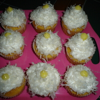 Mt Southington Cupcakes  This cupcake is dedicated to MT Southington skii resort in CT. It is a coconut flavored cupcake with white chocolate buttercream topped...