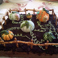 Pumpkin Patch chocolate cake and frosting with pretzel fence glued together with chocolate. handpainted fondant pumpkins and faires.