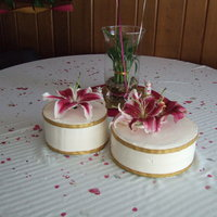 My Son And Daughters Cake   Very simple cake that is what the bride wanted. Whpped cream frosting with an organic cake. Gold ribbon and Star Gazer Lilies for decor.