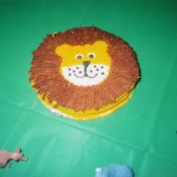 Lion Cake This cake was for my sons 1st Birthday. It was a mini cake for only him to eat.
