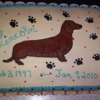 Dachshund Memorial Cake   Memorial cake for my Dachshund, Mr. Lincoln, who would have been 13 years oldthis event turned into fund raiser for shelter animals