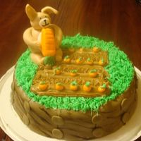 Mmm Carrotts! carrot cake,cream cheese icing and fondant decorations!