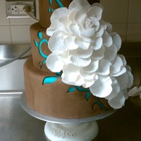 Idea For A Wedding Cake This is a practice cake for an idea I had. I showed it to the bride & now ill be making this in a 6 tier! I'm so excited :)