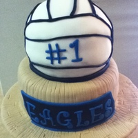 Middle School Volleyball Championship Cake