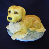Doggie This is my first try at a 3D dog cake. I did it for a winner of my recent contest. I carved the cake from a slab then painted it by hand....