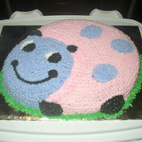 Ladybug Cake Made this cake for my grand-daughters 7th birthday. All BC, pink and purple stars with a little grass for the border. This is Wiltons cake...