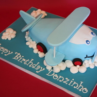 Baby Biplane First Birthday Cake We made this adorable light blue baby bi-plane cake for a boys first birthday party. The baby plane as a cute smile on its face and it...
