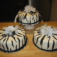 Zebra Print, For 50Th Birthday Party