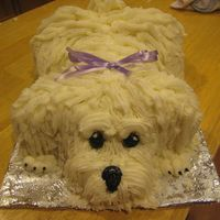 Puppy Cake   puppy cake w/buttercream frosting. Thanks for the ideas CC's!