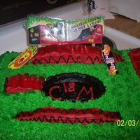 Skate Board Park THIS IS MY FIRST SKATEBOARD TYPE OF CAKE. IT WAS MADE FOR MY BROTHER-N-LAW'S 18 BIRTHDAY.