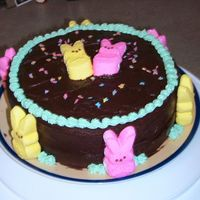 Easter Bunny Cake I love love love PEEPS. This was a fun way I experimented with them for my contribution of dessert at Easter dinner. The kids went wild for...