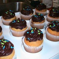Dolphin Cupcakes  This is for my husband's last day. It's yellow cake with chocolate cream cheese icing and dolphin sprinkles on top. I used an...
