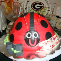 Lady Bug Cake ! marble cake with fanilla cake and fondant accents .