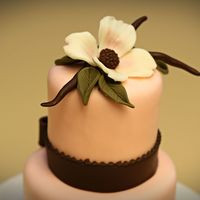 Mini Dogwood Cake