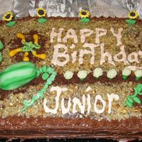 Garden Cake This is a homemade German choc garden cake with watermelon, summer squash, lettuce & pumpkin patch, cauliflower & sunflowers. I...