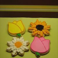 Flower Cookies   NFSC with royal icing.