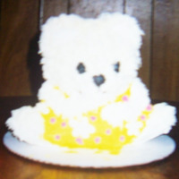 Sisters Teddy Cake This was made for my sister who loved teddy bears..