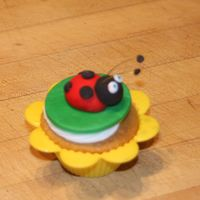 Ladybug Cupcakes   These were a hit at my daughters 2nd b-day party!