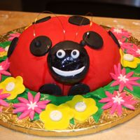 Ladybug Birthday Cake   My 2 year old LOVES ladybugs, so I had to make this cake...and the cupcakes to go along with it..