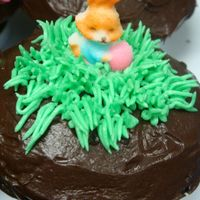 Easter Cupcake Chocolate fudge cupcake cover with chocolate fudge icing..grass are from butter cream icing