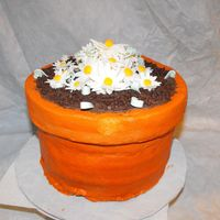 Flower Pot Cake 5 layers of cake, buttercream filling, and decorationg, other than the flowers which are gum paste
