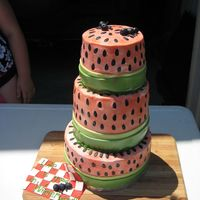 Watermelon Cake For our neighborhood blockparty. My 7 year old daughter insisted that the cake have ants and made them herslef. Got a little bumped up...