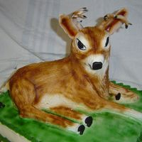 Small Deer this was a birthday cake for a teenage boy. He loved it. My first try at a 3D cake.