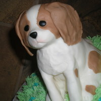 Cavalier King Charles Spaniel Puppy Birthday Cake Cake Gallery on