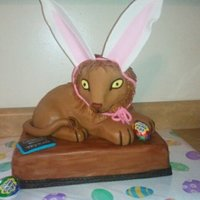 Cadbury Easter Bunny Tryouts Lion from the Cadbury tryouts.
