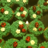 Ladybug Cupcakes Basic cupcakes topped with green butter cream from a #133 tip. The lady bugs are just colored fondant shaped into a ladybug. My wife found...
