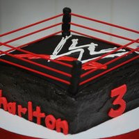 Wwe Cake Chocolate cake with chocolate ganache filling and chocolate BC. Fondant details, the rope is bamboo skewers dyed red. Thanks for looking!...