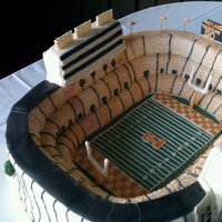 Neyland Stadium Replica 9-12x18 sheet cakes. All iced in buttercream and covered in fondant. Front entrance and back entrance were rkt. All brick work and mini...