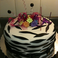Zebra Style 40Th Year