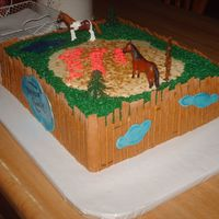 Dreamer Ranch This cake I did for a little girls birthday. She loves horses and her new horse is named Dreamer. Fencing is MMF, grass is BC, water is...