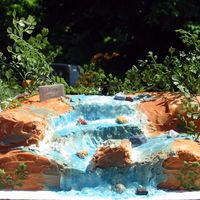 Waterfall This was a groom's cake of the waterfall where the groom proposed to the bride. They were both avid hikers and loved going to this...