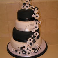 Black Andwhite Elegance White tiers are white chocolate mud cake with caramel ganache filling and covered in white chocolate ganache then white fondant......Black...