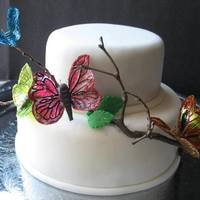 Cake With Gelatin Butterflies