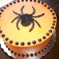 Spider Cake Chocolate cake, ganache filled, buttercream icing