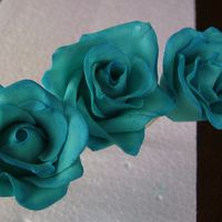 Dusted Blue Roses (Beginner) thank you again edna for the great youtube turtorial.getting there slowly, but surely! once i get the jem cutter hopefully i'll get a...